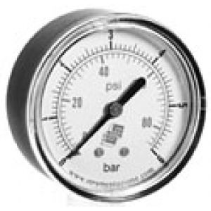 Standard pressure gauge, dual scale, rear connection, accuracy class 2.5
